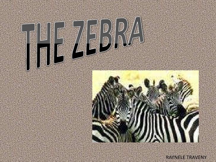 THE ZEBRA<br />RAYNELE TRAVENY<br />
