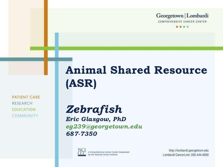 Animal Shared Resource (ASR)  Zebrafish Eric Glasgow, PhD  [email_address] 687-7350