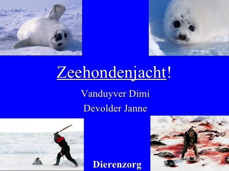 Zeehondenjacht ! Vanduyver Dimi Devolder Janne Dierenzorg