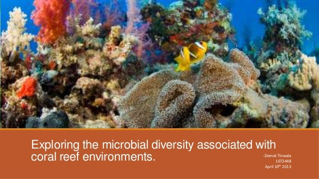 Exploring the microbial diversity associated withcoral reef environments.                      -Zeenat Tinwala            ...