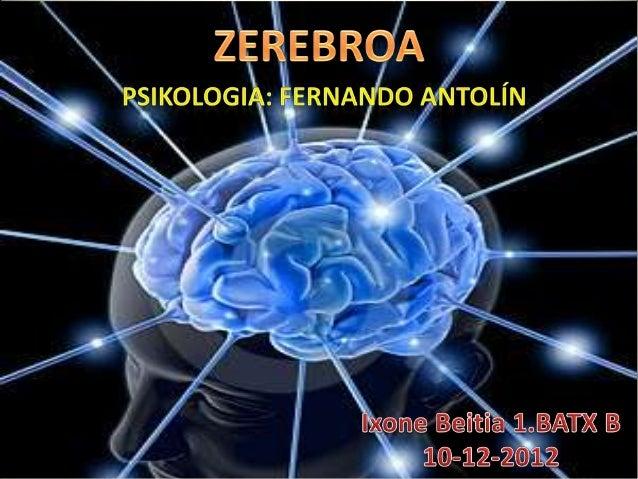 AURKIBIDEA•   Definizioa•   Sarrera•   Egiturak eta funtzioak            Sistema linbikoa            kortexa (lobulo fro...