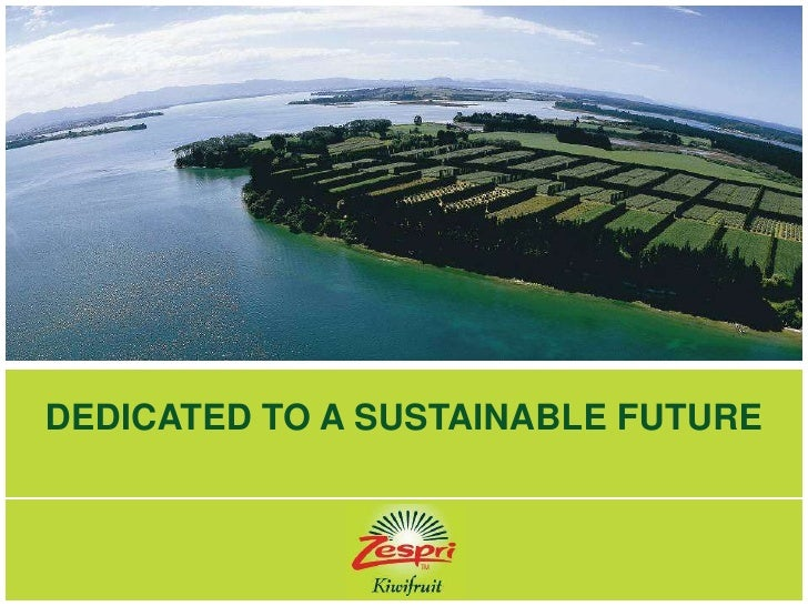 DEDICATED TO A SUSTAINABLE FUTURE<br />