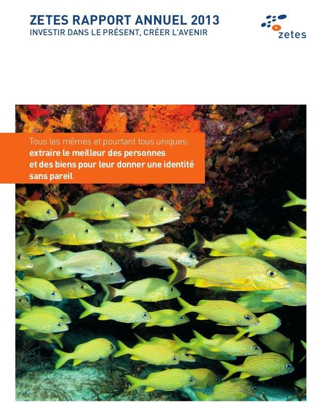 Zetes all report_2013-fr-2