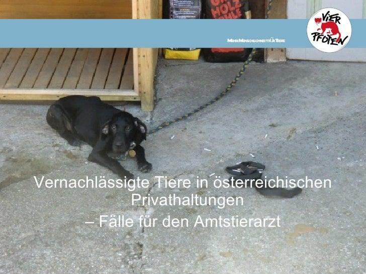M M ichkeitfü T e                           ehr enschl  r ierVernachlässigte Tiere in österreichischen             Privath...
