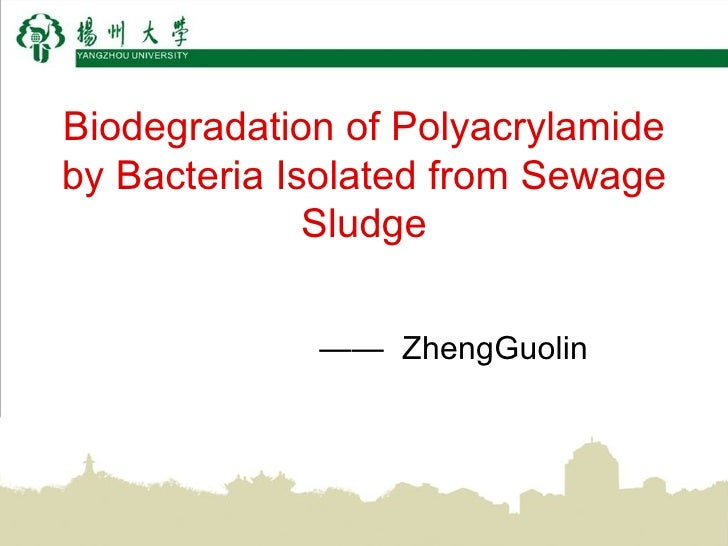 Biodegradation of Polyacrylamide by Bacteria Isolated from Sewage Sludge ——  ZhengGuolin