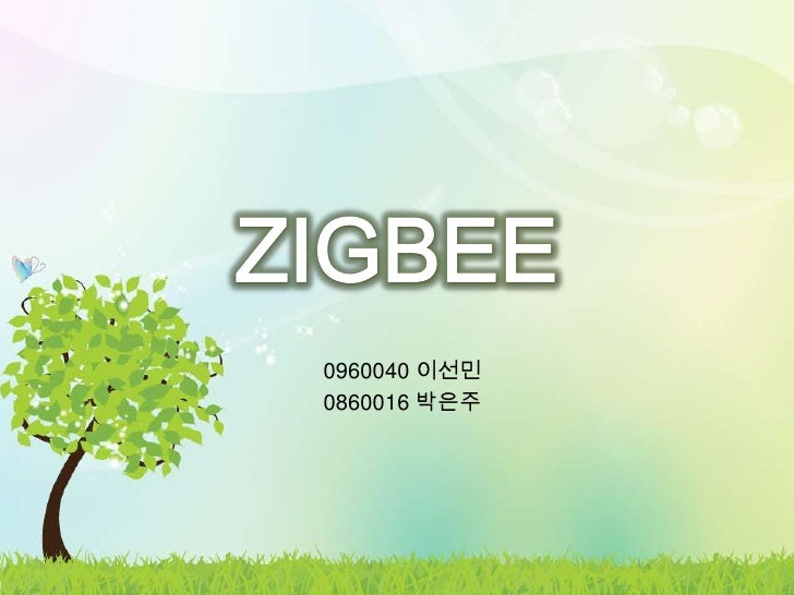 ZigBee by Lee and Park