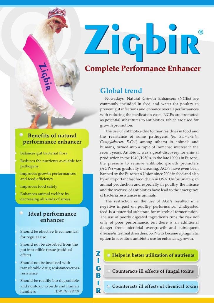 Zigbir