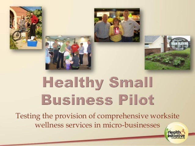 A Health Promotion Model for Small Businesses – The Healthy Small Business Pilot