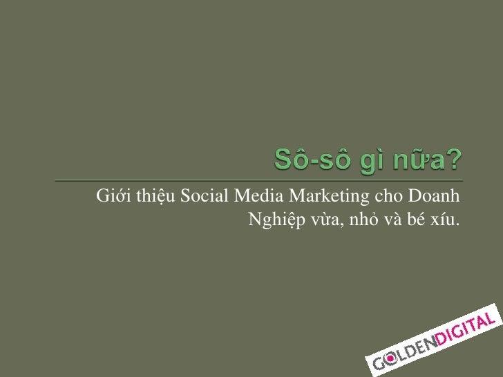 Giới thiệu Social Media Marketing cho Doanh                   Nghiệp vừa, nhỏ và bé xíu.