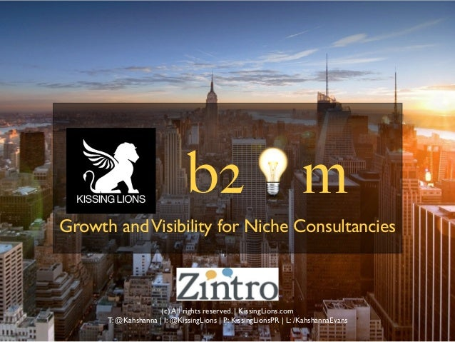 B2M, Visibility and Growth for Niche Consultancies (c) All rights reserved.