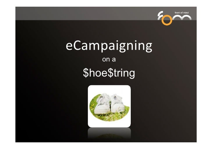 eCampaigning on a shoestring