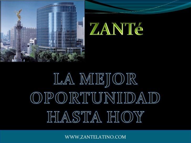 WWW,ZANTELATINO.COM