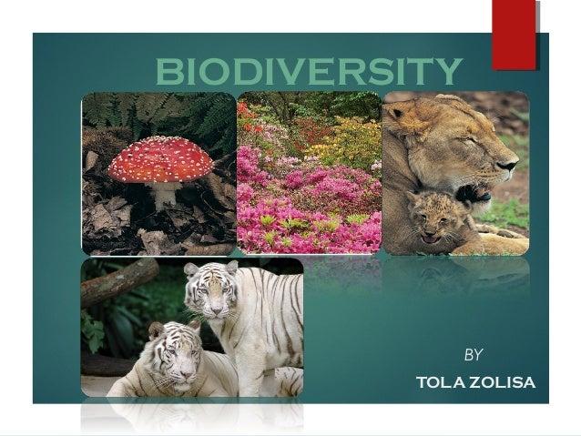 BIODIVERSITY  BY TOLA ZOLISA