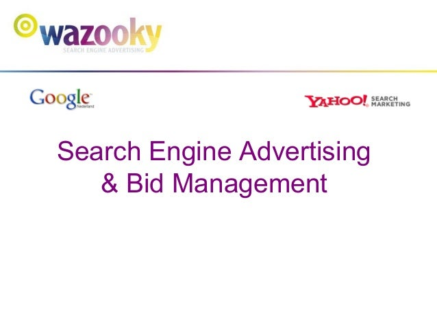 Search Engine Advertising & Bid Management