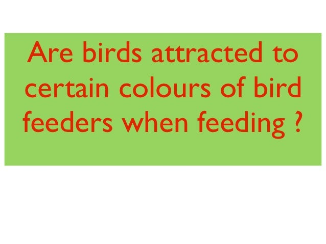 Are birds attracted tocertain colours of birdfeeders when feeding ?