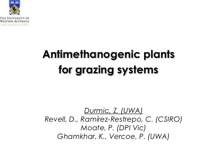 Antimethanogenic plants   for grazing systems             Durmic, Z. (UWA)Revell, D., Ramírez-Restrepo, C. (CSIRO)        ...