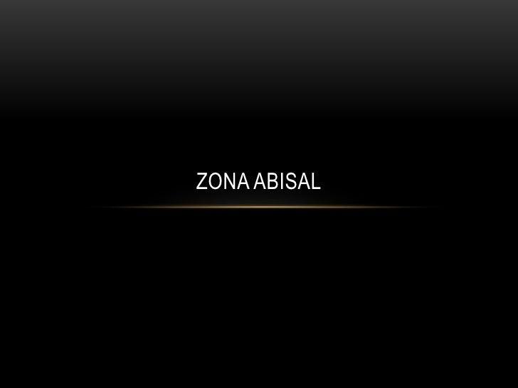 ZONA ABISALZona Abisal