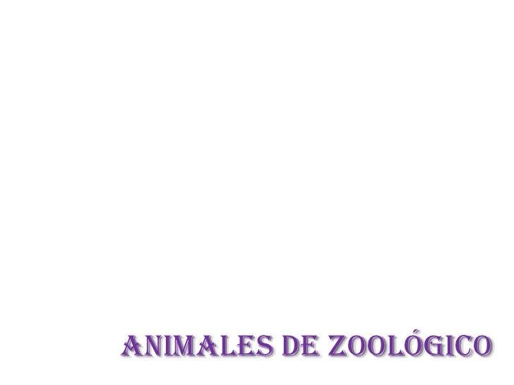 ANIMALES DE ZOOLÓGICO<br />