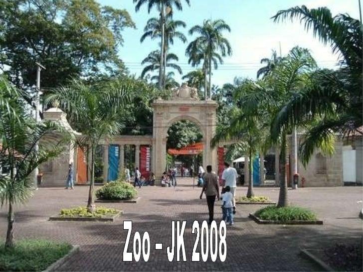 Zoo – JK 2008