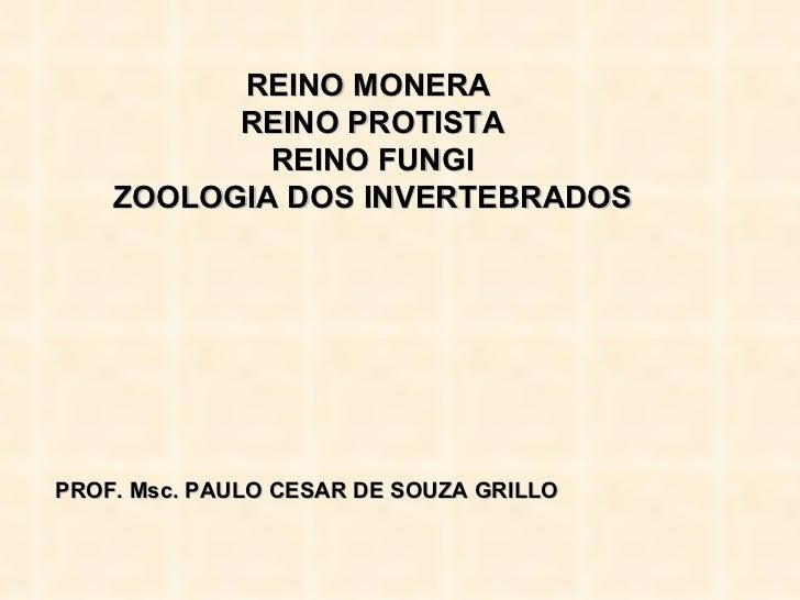 REINO MONERA  REINO PROTISTA REINO FUNGI ZOOLOGIA DOS INVERTEBRADOS PROF. Msc. PAULO CESAR DE SOUZA GRILLO