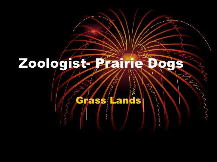 Zoologist- Prairie Dogs Grass Lands