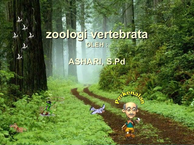 zoologi vertebrata       OLEH :   ASHARI, S.Pd