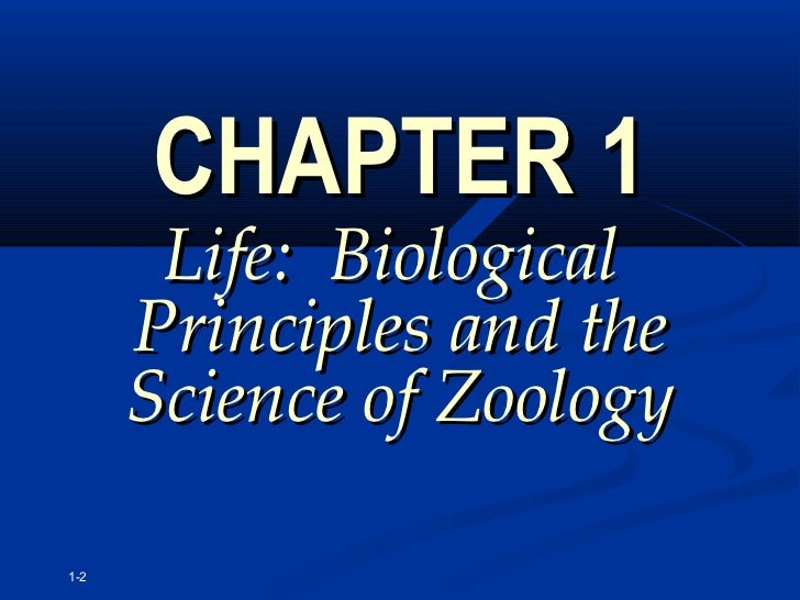 intro to zoology midterm notes More than 1800 biology questions and answers to help you study all subjects  zoology 242 q&as can be found here covering the main phyla: poriferans,.