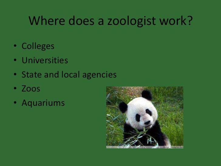 I want to be a zoologist!!?