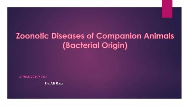 Bacterial Zoonotic diseases of pets
