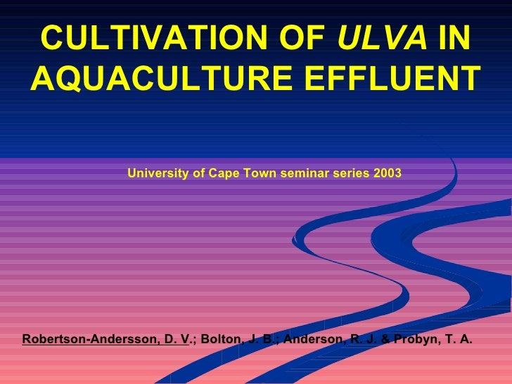 Cultivation of Ulva in aquaculture effluent