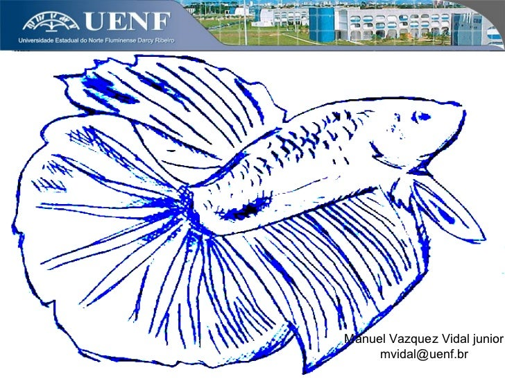 Manuel Vazquez Vidal junior     mvidal@uenf.br     allextb@ hotmail.com