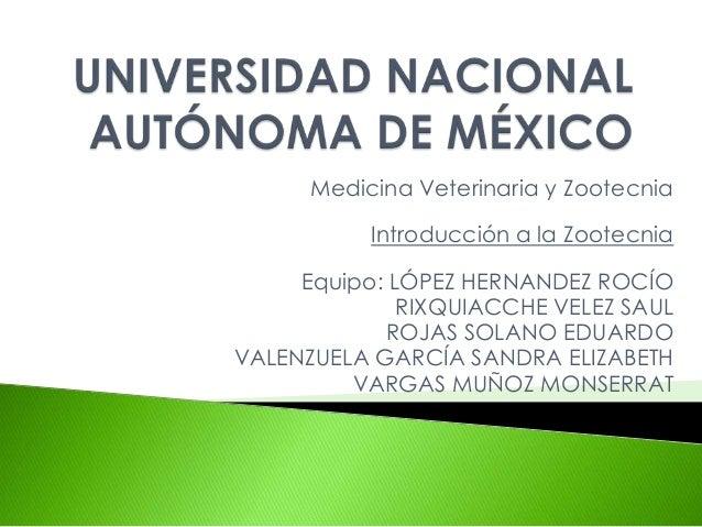 Medicina Veterinaria y Zootecnia           Introducción a la Zootecnia     Equipo: LÓPEZ HERNANDEZ ROCÍO              RIXQ...
