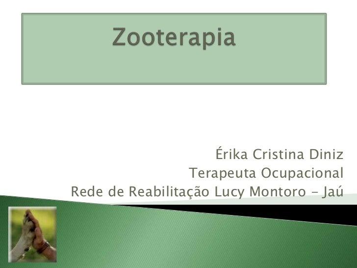 Érika Cristina Diniz                 Terapeuta OcupacionalRede de Reabilitação Lucy Montoro - Jaú