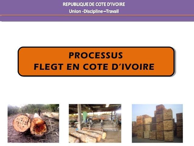 PROCESSUS FLEGT EN COTE D'IVOIRE PROCESSUS FLEGT EN COTE D'IVOIRE