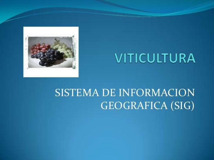 SISTEMA DE INFORMACION        GEOGRAFICA (SIG)