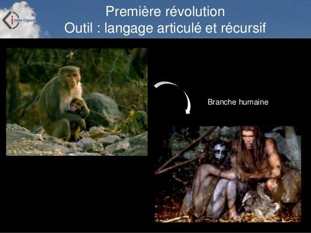 Inter-Ligere SARL - Site: inter-ligere.fr Première révolution Outil : langage articulé et récursif Branche humaine