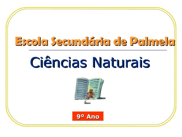 Escola Secundária de Palmela  Ciências Naturais          9º Ano