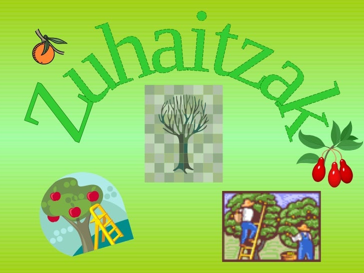 Zuhaitzak
