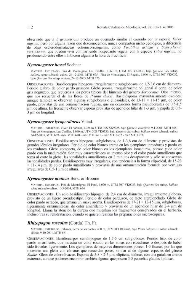 112 Revista Catalana de Micologia, vol. 28: 109-114; 2006.observado que A. hygrometricus produce un quemado similar al cau...