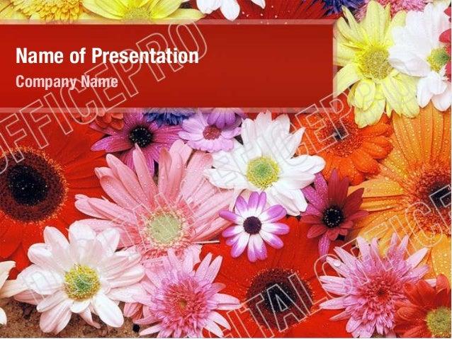 Name of Presentation Company Name