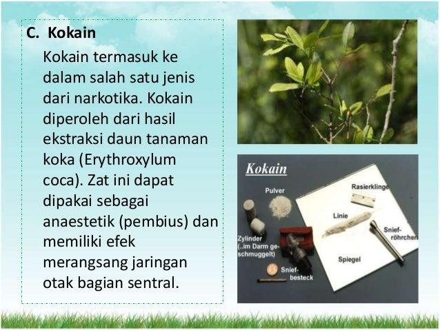 D. Sedativa dan Hipnotika (Penenang) Beberapa macam obat dalam dunia kedokteran, seperti pil BK dan magadon digunakan seba...