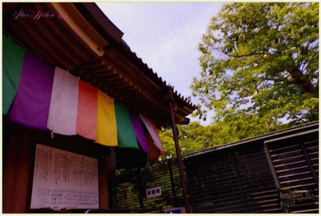 ll Fuimos a Nagano visitamos el castillo Matsumoto,  museo,templos el mejor Zenkoji