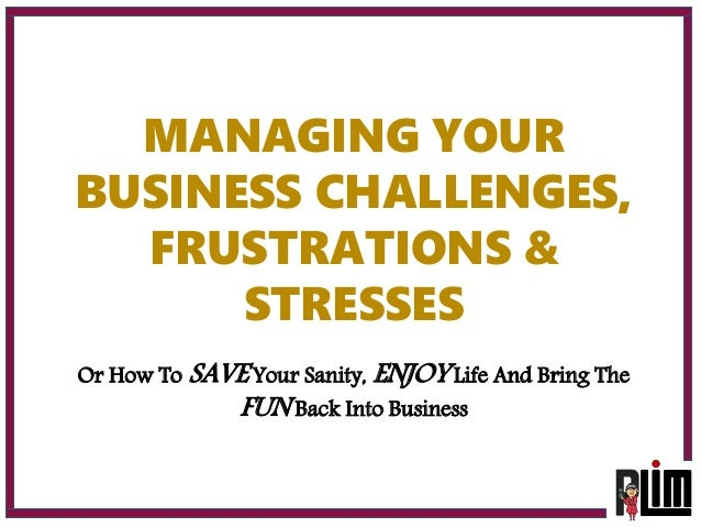 MANAGING YOUR BUSINESS CHALLENGES, FRUSTRATIONS & STRESSES Or How To SAVE Your Sanity, ENJOY Life And Bring The FUN Back I...