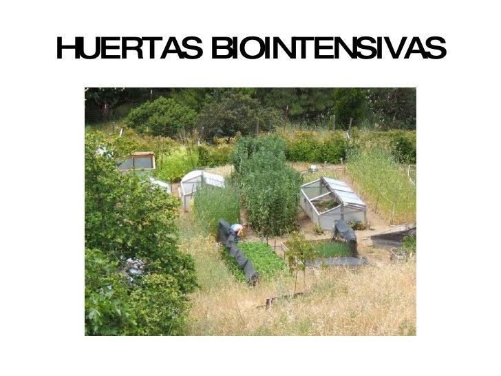 HUERTAS BIOINTENSIVAS