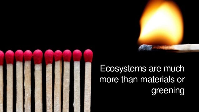 To maximize ecosystem value • Environmental systems are assets • Integrate, holistic approach • Ecosystem development