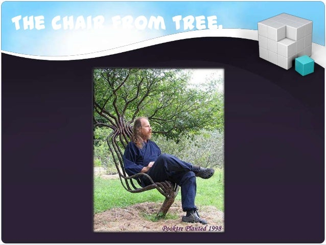 The chair from tree.