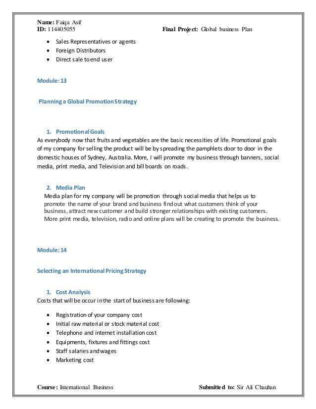 domestic business plan vs global business plan