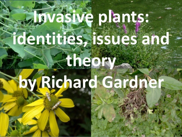 Invasive plants: identities, issues and theory by Richard Gardner