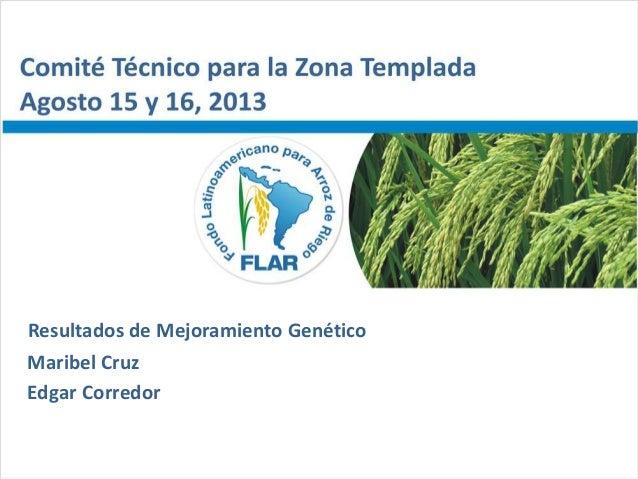 Comité Técnico para la Zona Templada– Agosto 15 y 16, 2013 Maribel Cruz Edgar Corredor Resultados de Mejoramiento Genético