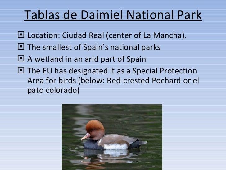 Tablas de Daimiel National Park <ul><li>Location: Ciudad Real (center of La Mancha). </li></ul><ul><li>The smallest of Spa...